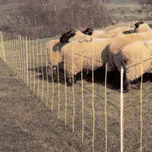 Electric Sheep Netting