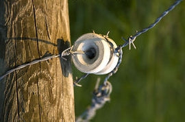 Barbed Wire in an Insulator
