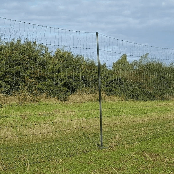 Tall Chicken Netting