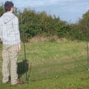 Electric Chicken Netting - tallest net is 90% more secure