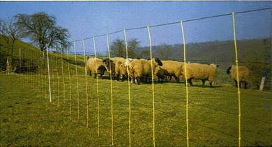 Livestok Sheep Netting