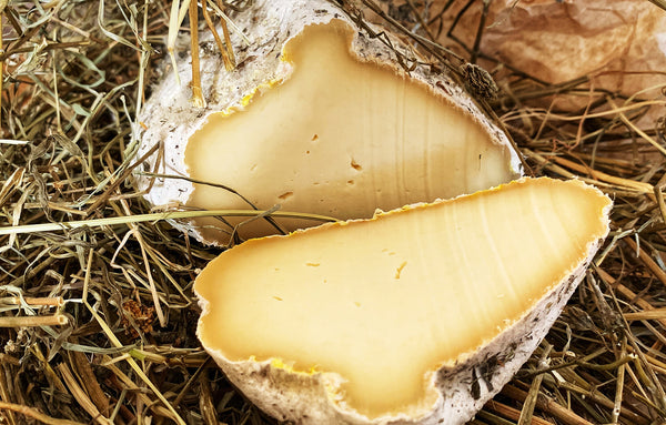 EXCLUSIVE! Pecorino Marmora, matured in Alpine fresh hay, 100% raw alpine sheep's milk.