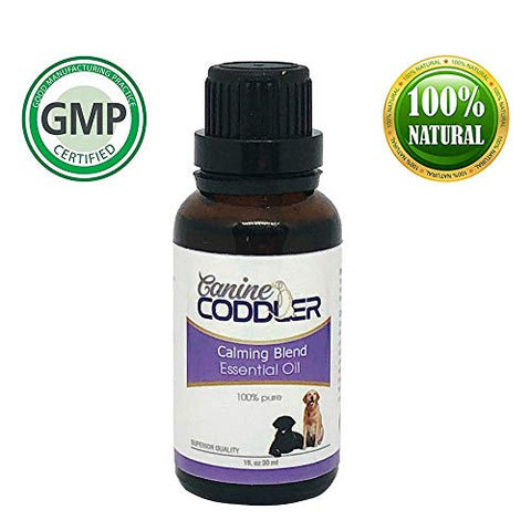 essential oil for dogs