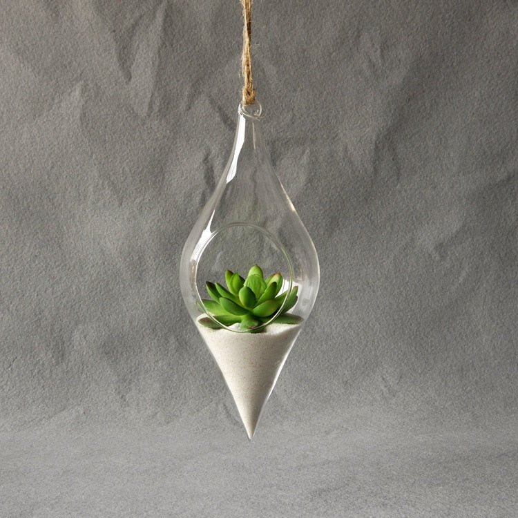 Hanging Glass Vase Terrarium