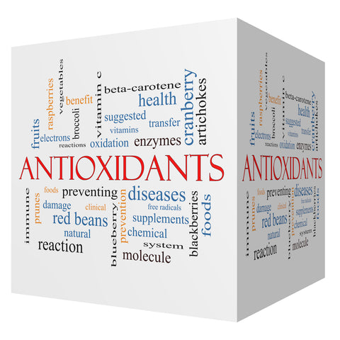 antioxidants Vigoria vitamins supplements