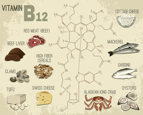 Vitamin B12 Foods Vigoria vitamins supplements