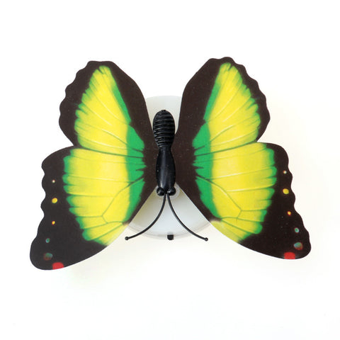 Butterfly Color Changing Light Lamp