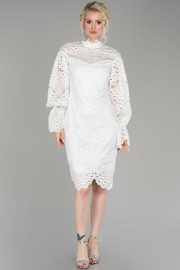 18221 Ecru Balloon Sleeve Embroidered Lace Dress