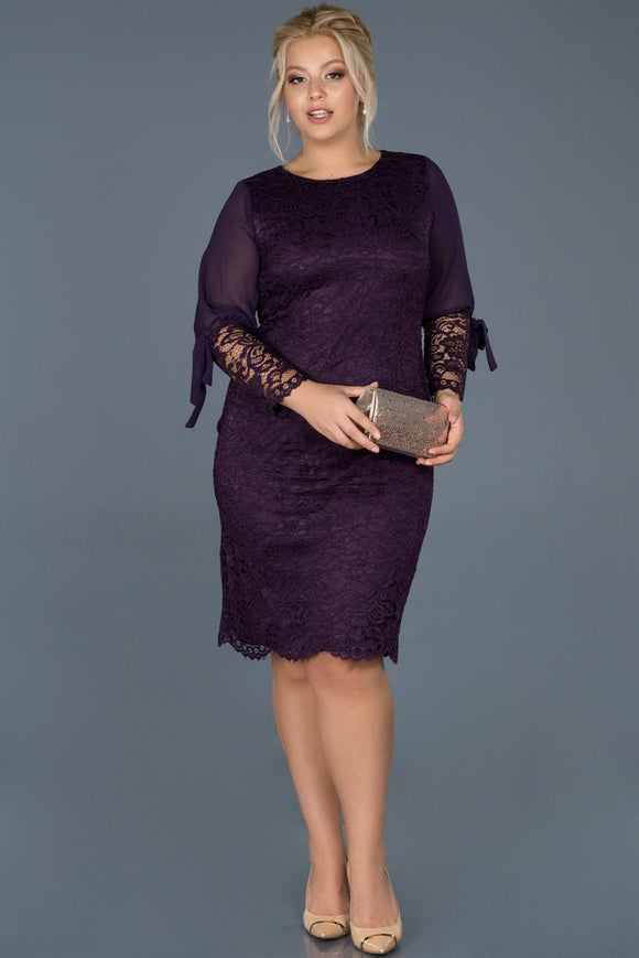 14419 dark purple chiffon sleeve lace dress