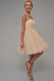1310072 Fawn Strapless Princess Dress