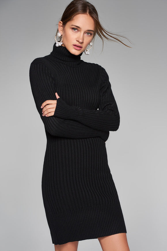 4510261 Black Turtleneck Sweater Dress