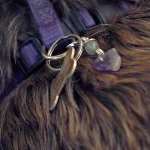 Pet Charms for Nervousness and Rescued Pets
