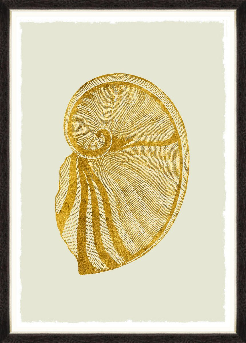 Wall Art - Golden Seashell II