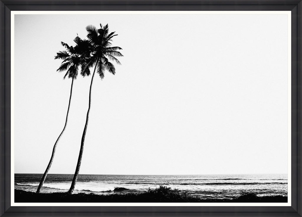 Wall Art - Tropical Dawn
