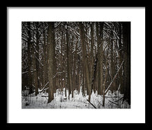 Harms Wood In Snow - Framed Print