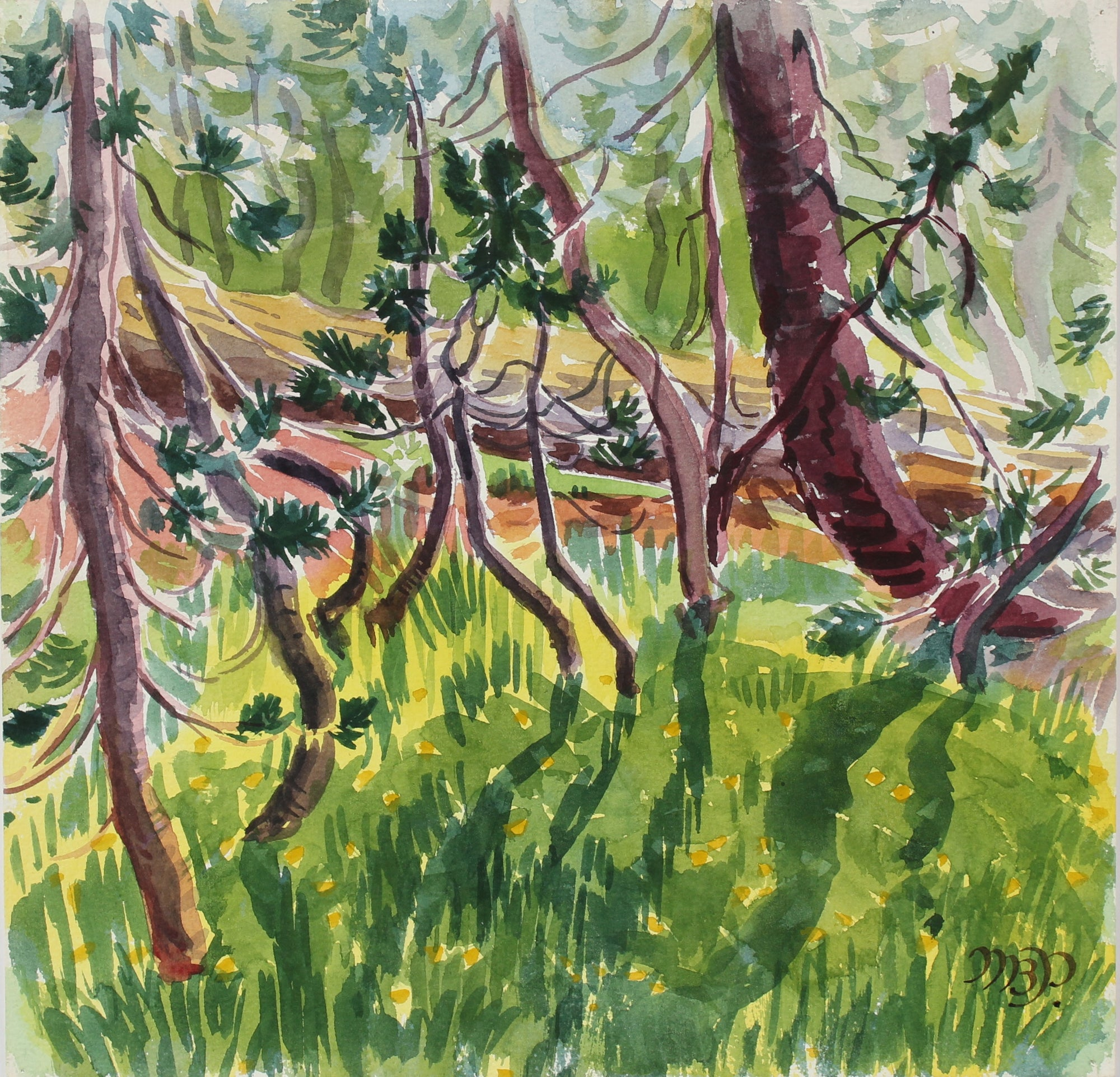 <i>Kindergarten Pines Playing in Sunlight</i> <br> 1966 Watercolor<br><br>#98645