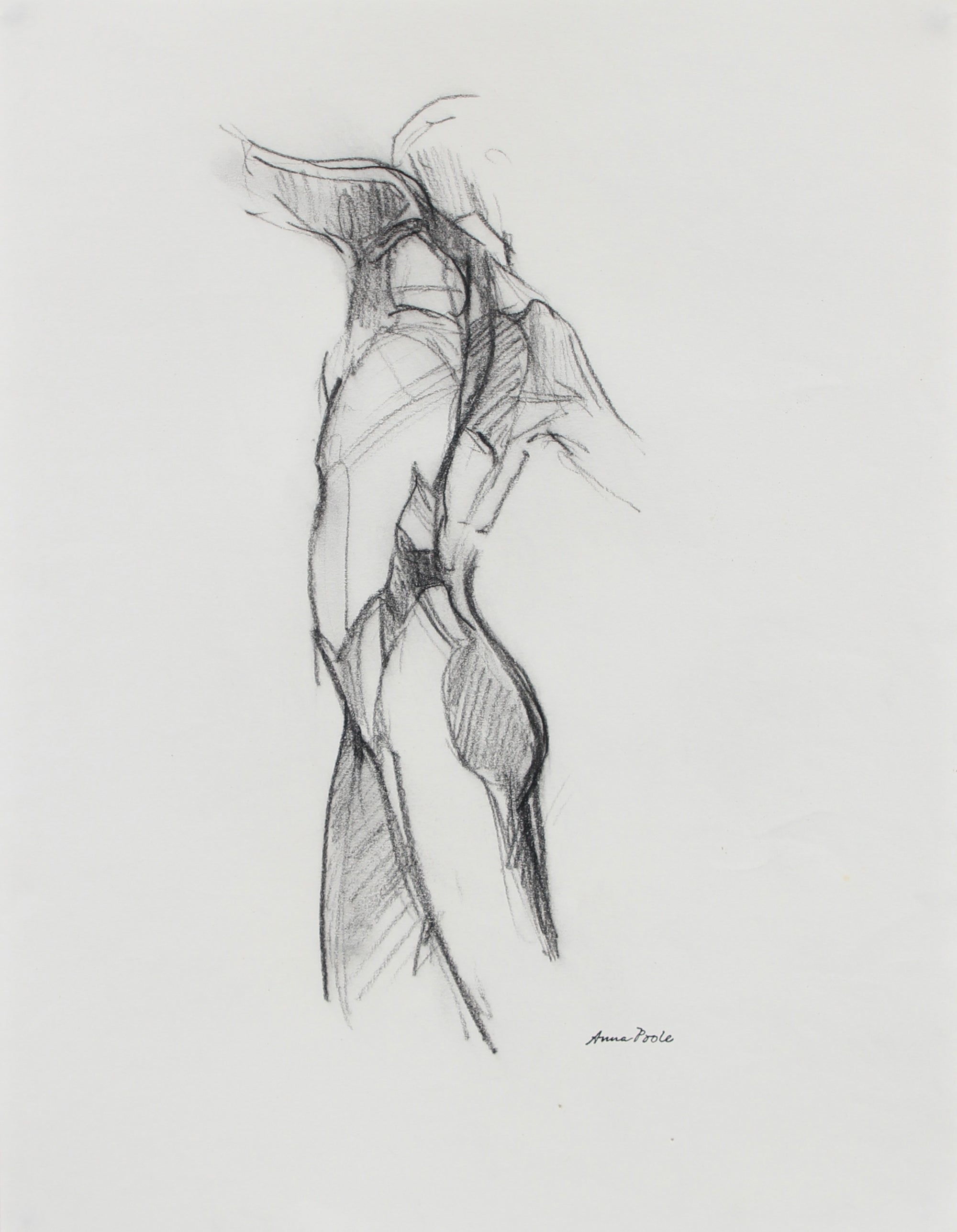 Nude Figure Study <br>Late 20th Century Charcoal <br><br>#98967