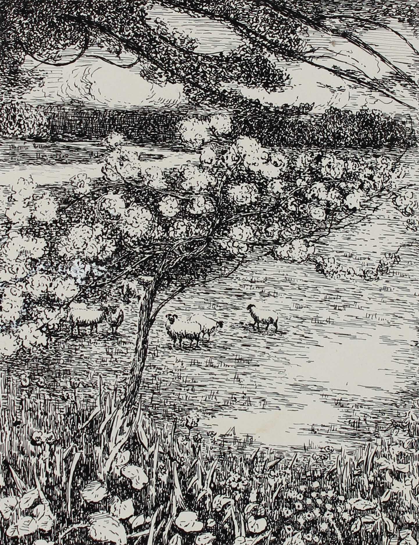 Pastoral Landscape with Sheep<br>1932 Ink<br><br>#A3277