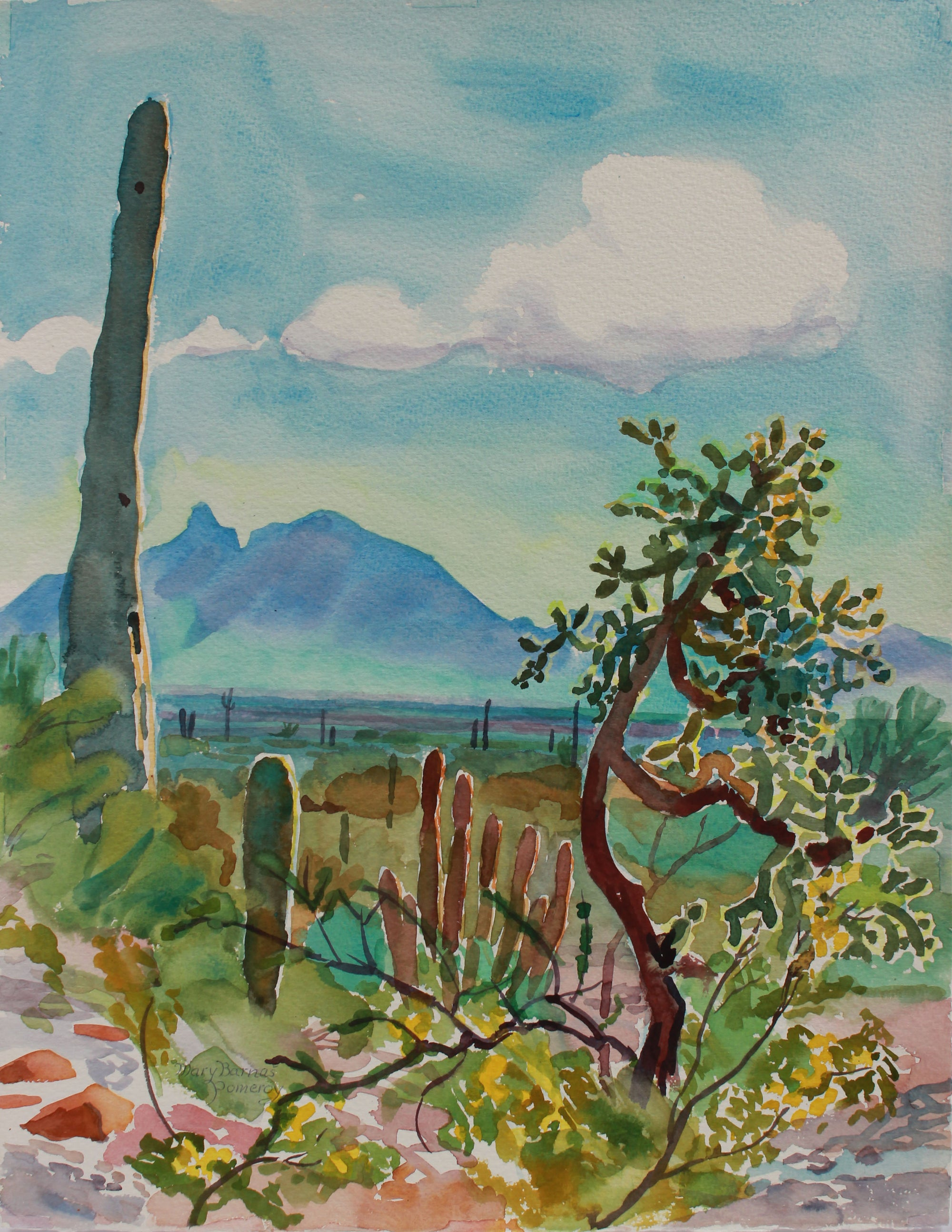 <i>Saguaros, Organpipes & Cholla</i> <br>1988 Watercolor <br><br>#A9369