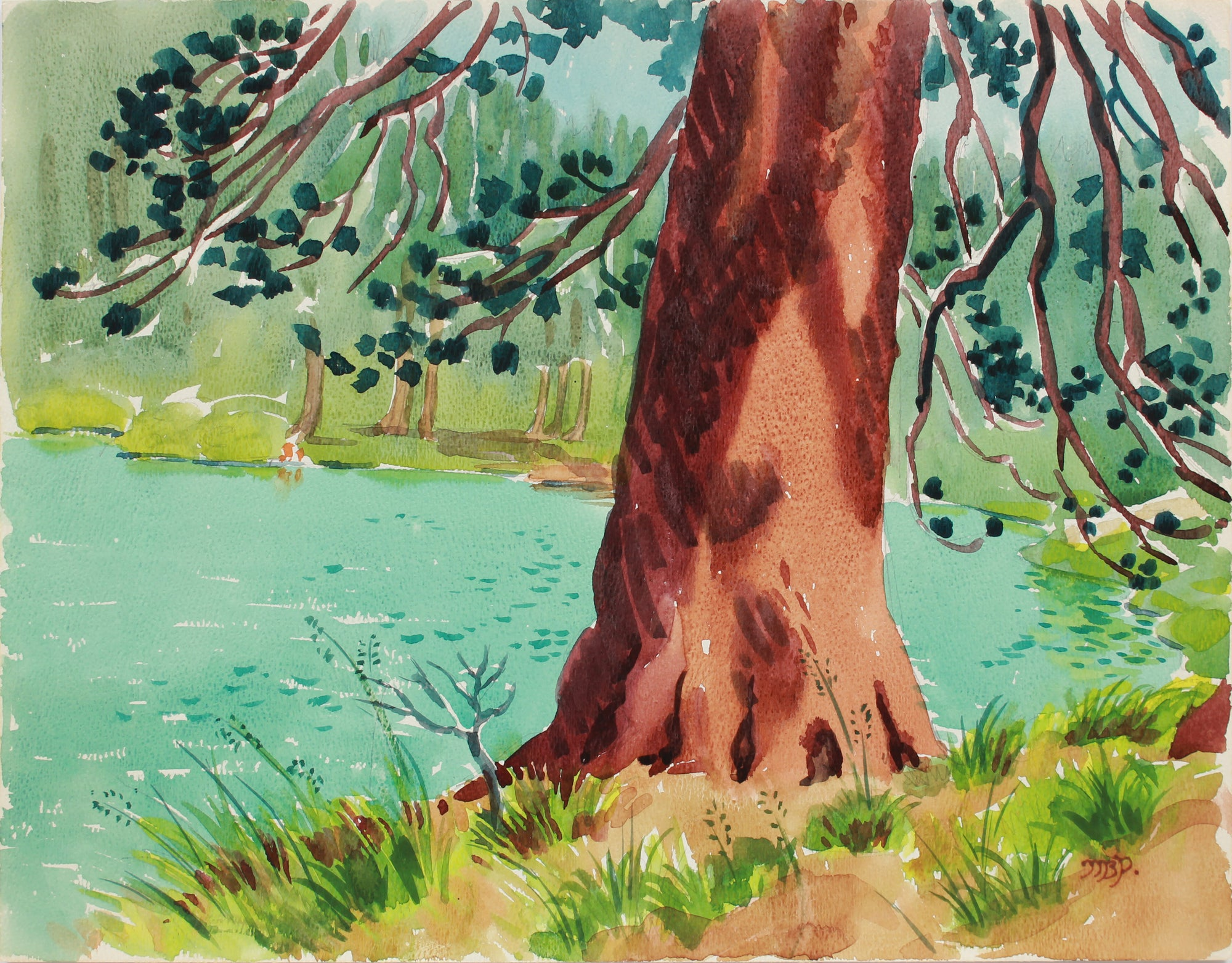 <i>Pine at Lake Gilmore</i> <br>20th Century Watercolor <br><br>#A9965