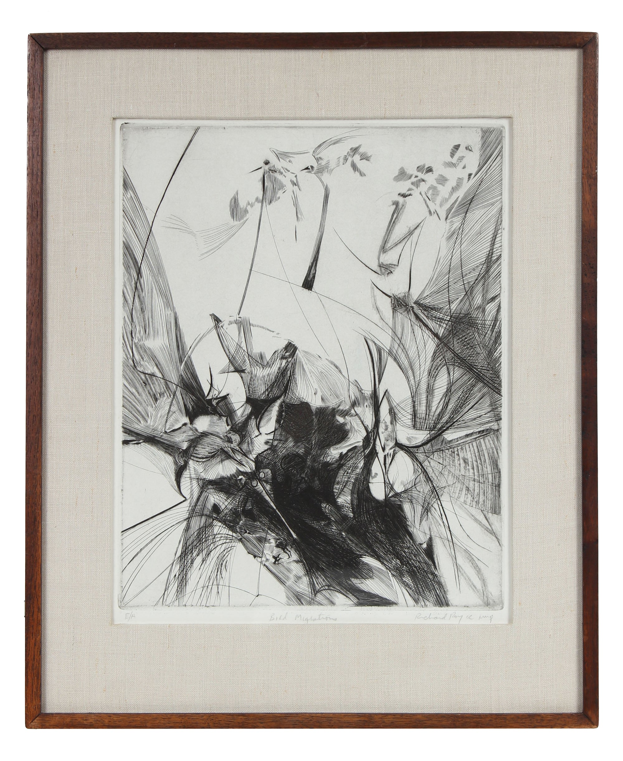 <i>Bird Migrations</i> <br>1960s Etching <br><br>#9776