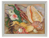 Colorful Kelp & Seashells<br>Mid - Late 20th Century Oil<br><br>#92157