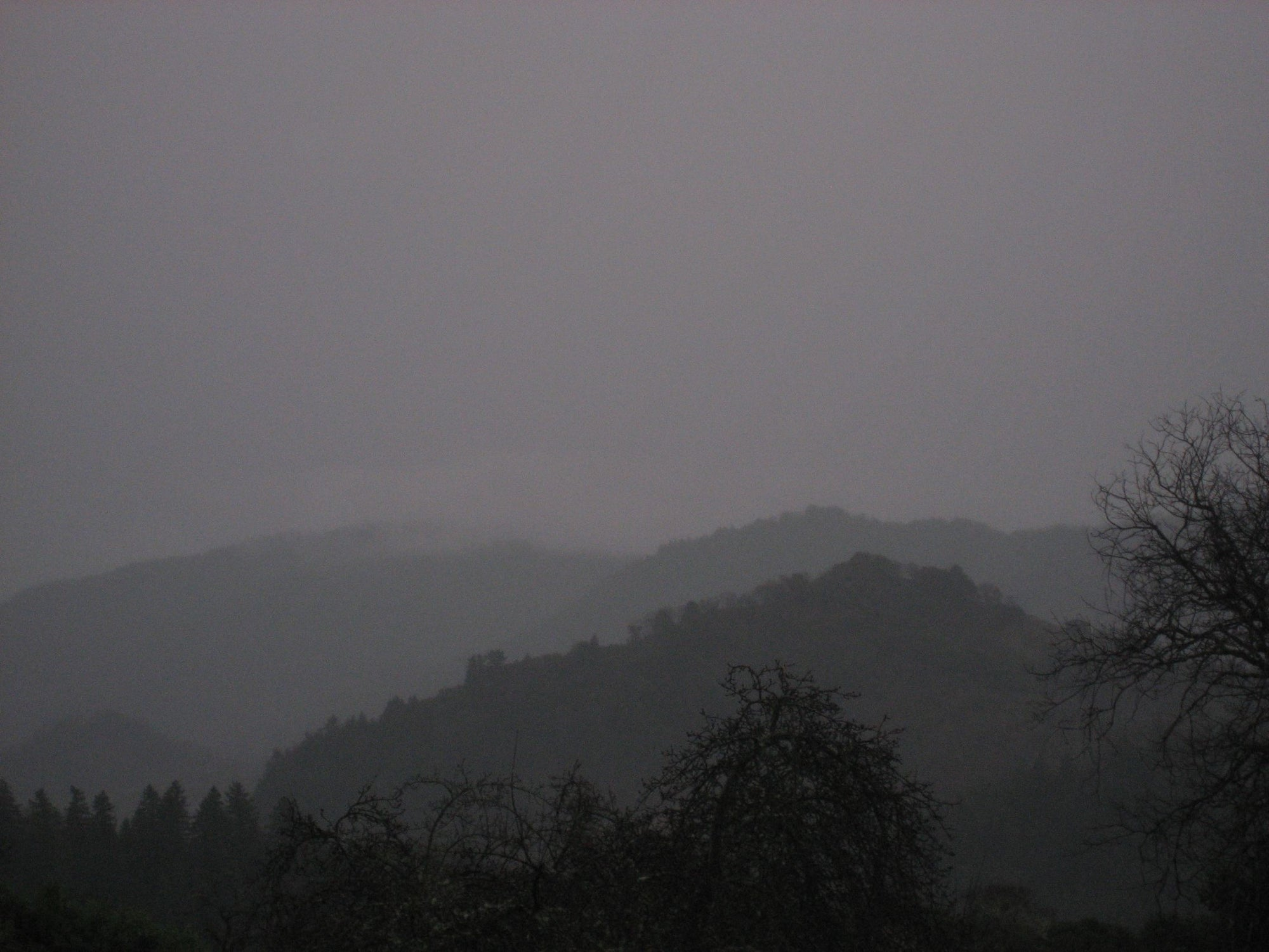 <I>Winter Dusk</I><br>Mendocino, California, 2011<br><br>GC0003