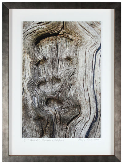 <I>Woodcut</I><br>Mendocino, California, 2014<br><br>GC0367