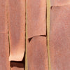 <I>Texture 5: Madrone Bark</I><br>Mendocino, California, 2014<br><br>GC0376