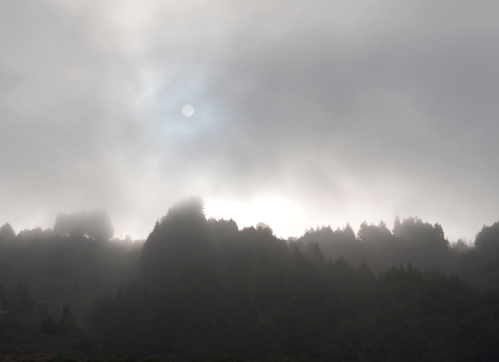 <I>Early Morning, Sun & Fog</I><br>Mendocino Coast, California, 2015<br><br>GC0392