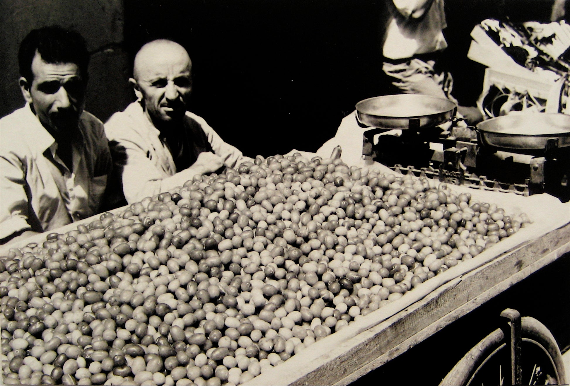 Roasting Chestnuts <br>1960s Photograph <br><br>#16233