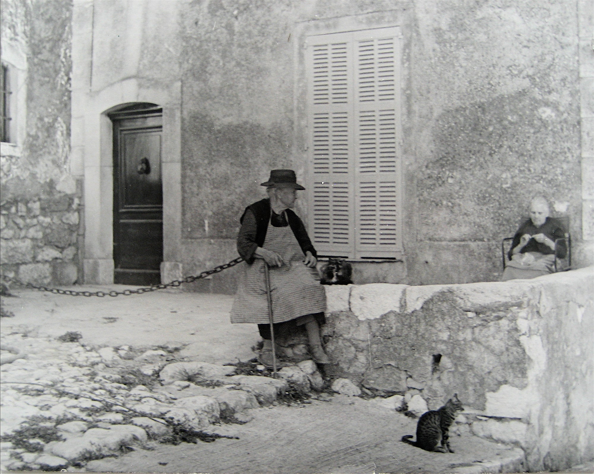 Cat on a Side Street <br>1960s Photograph <br><br>#16268