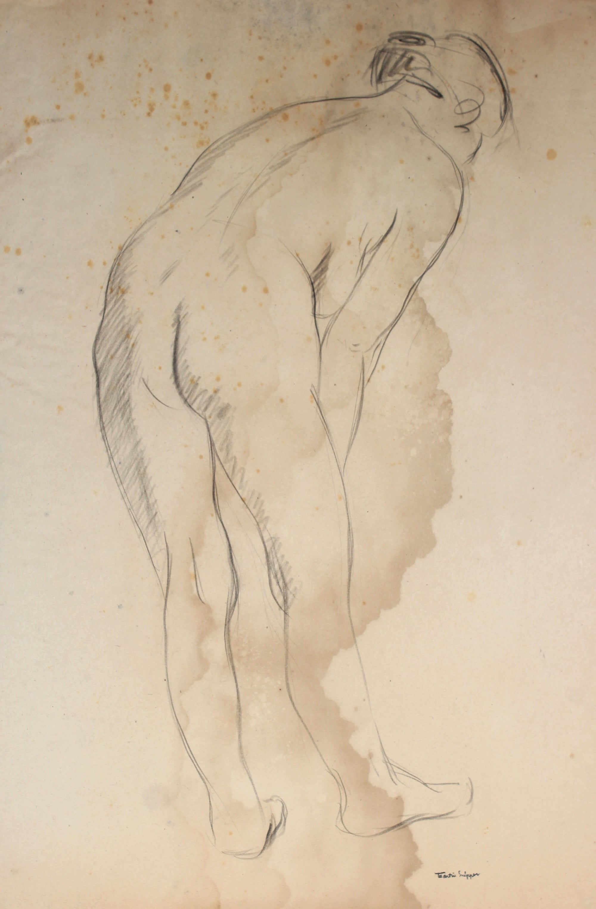 Nude Figure Study <br>1930s Charcoal<br><br>#49665