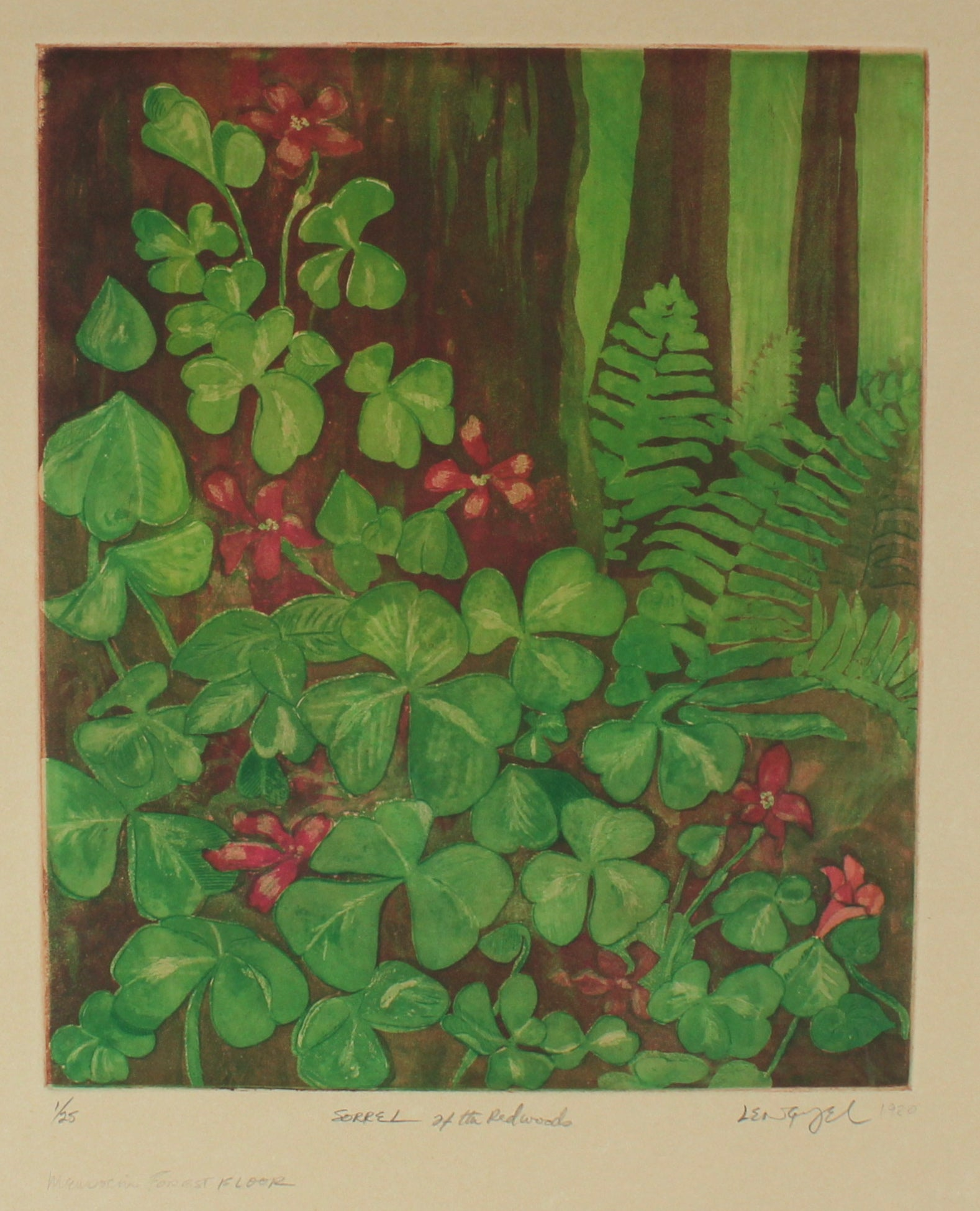 <i>Sorrel at the Redwoods, Mendocino Forest Floor</i><br>1980 Etching<br><br>#56829
