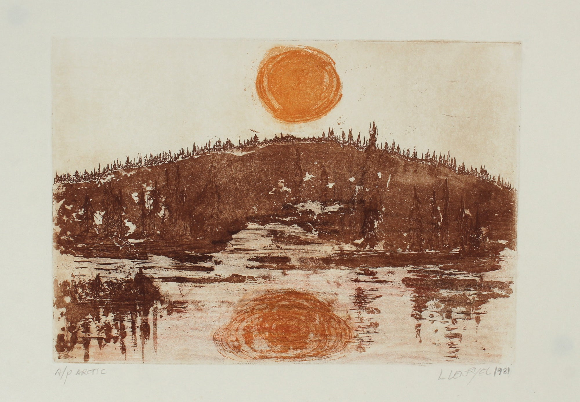 <i>Arctic</i> <br>1981 Etching <br><br>#57244