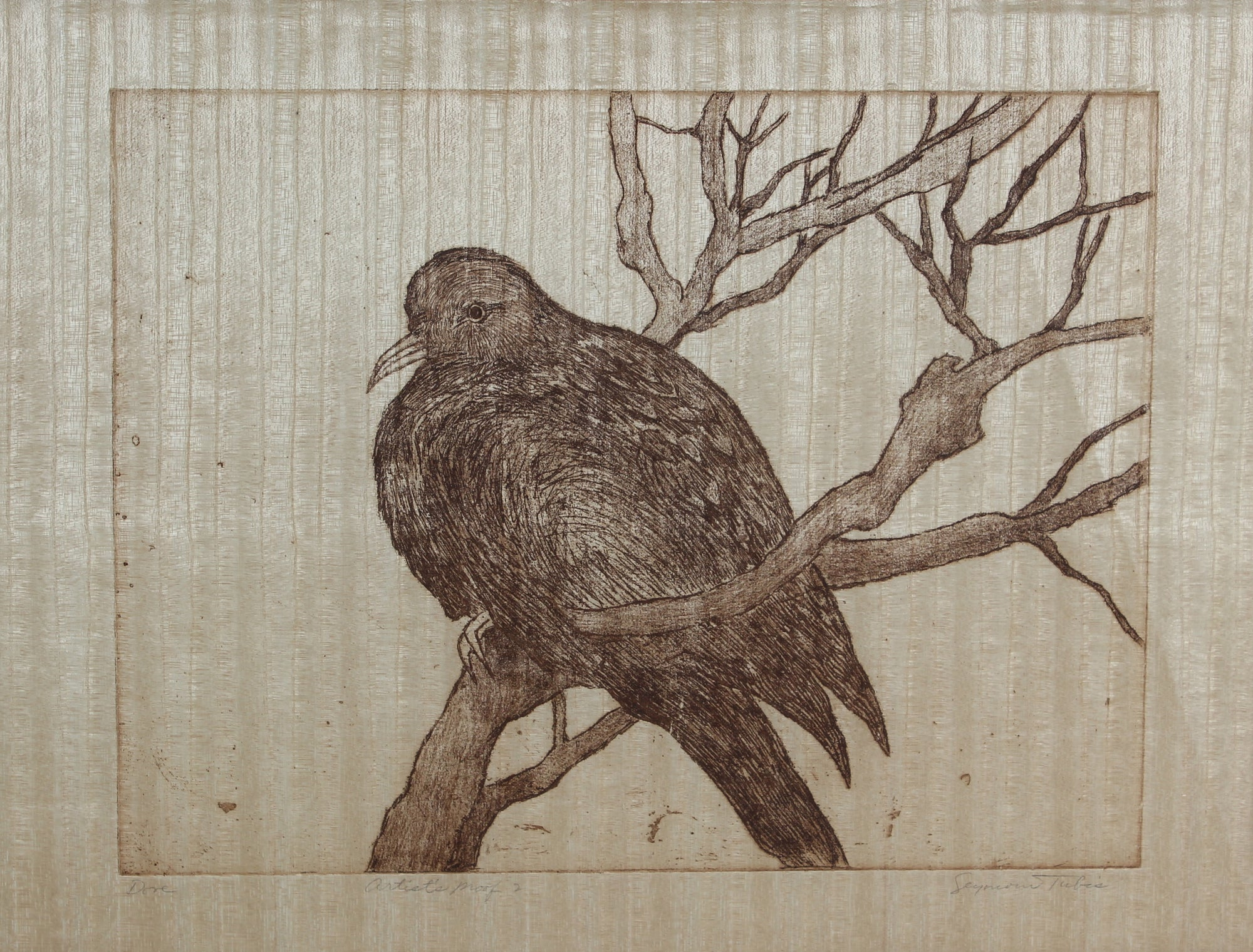 <i>Dove</i> <br>20th Century Etching <br><br>#59189