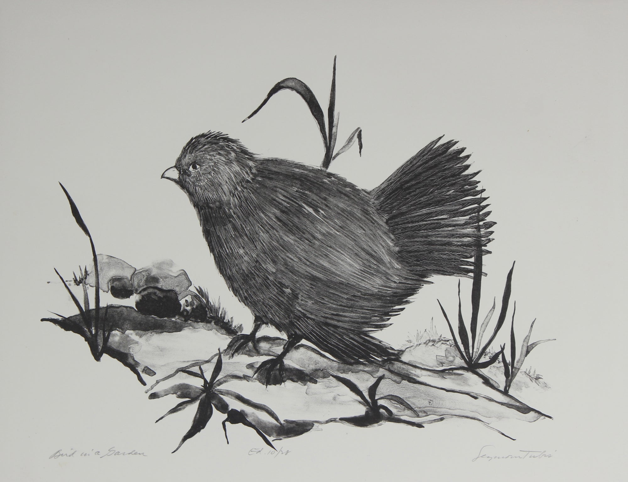 <i>Bird in a Garden</i><br> Lithograph on Paper<br><br>#59196