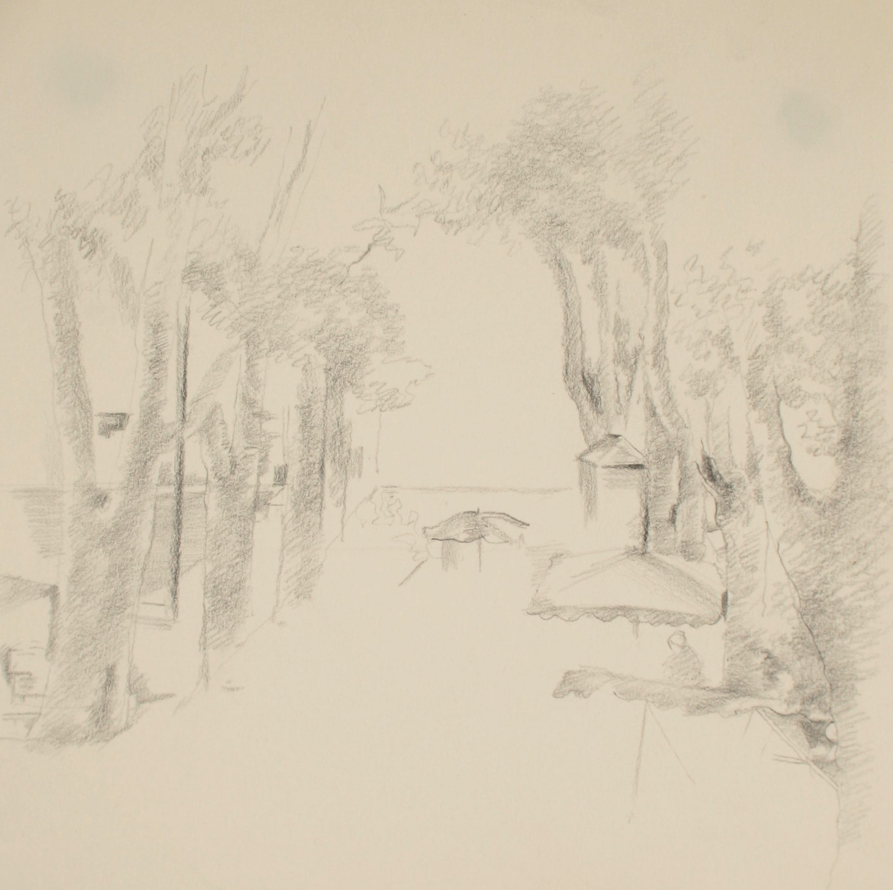 The View Beneath the Trees <br>Late 20th Century Graphite<br><br>#71498