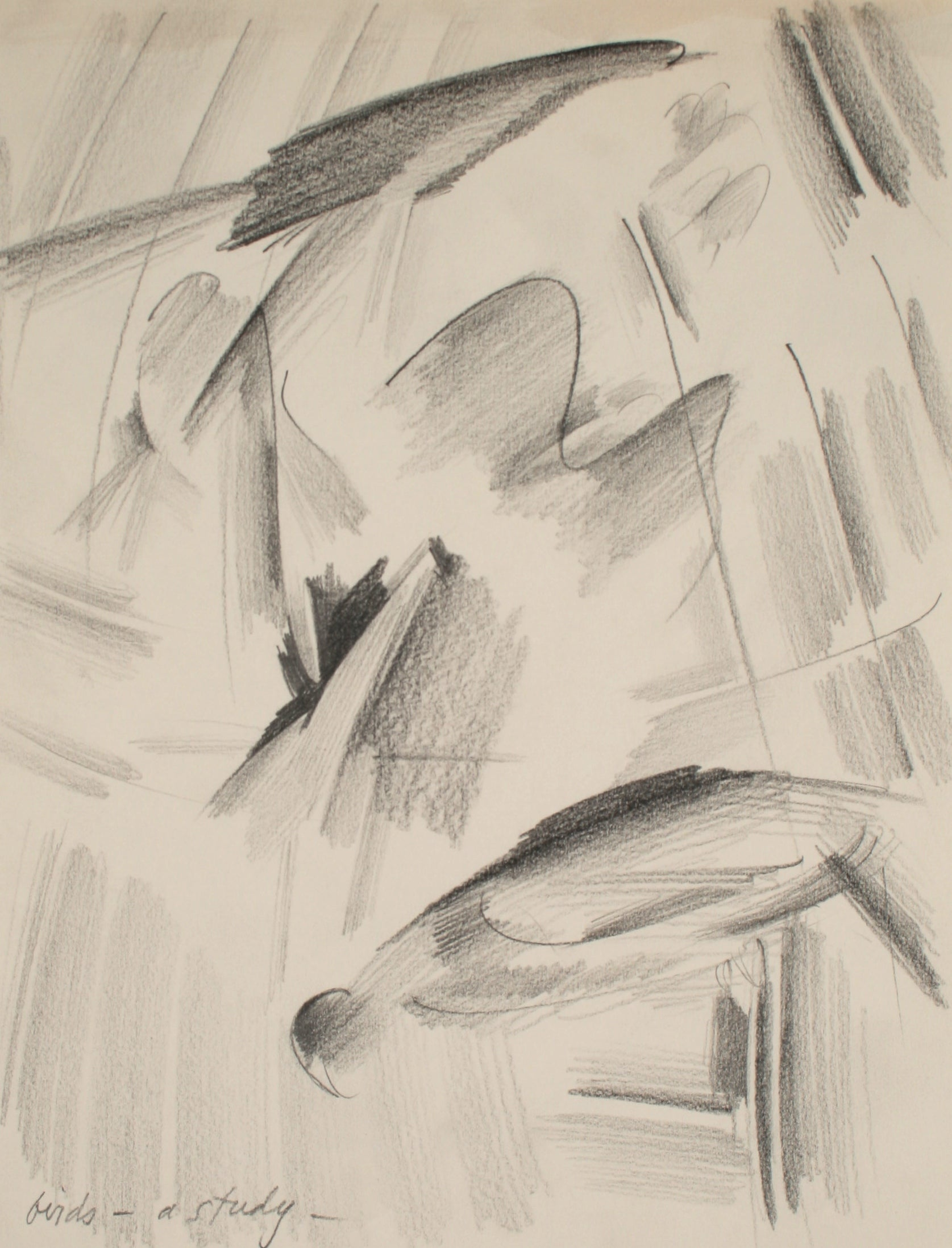 <i>Birds - A Study</i><br>Late 20th Century Graphite<br><br>#71505