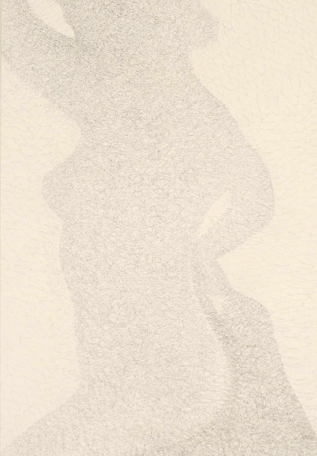 Shadow of a Woman <br>Late 20th Century Graphite <br><br>#71540