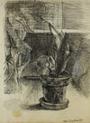 Potted Plant At the Window<br>Ink, Mid Century<br><br>#7739