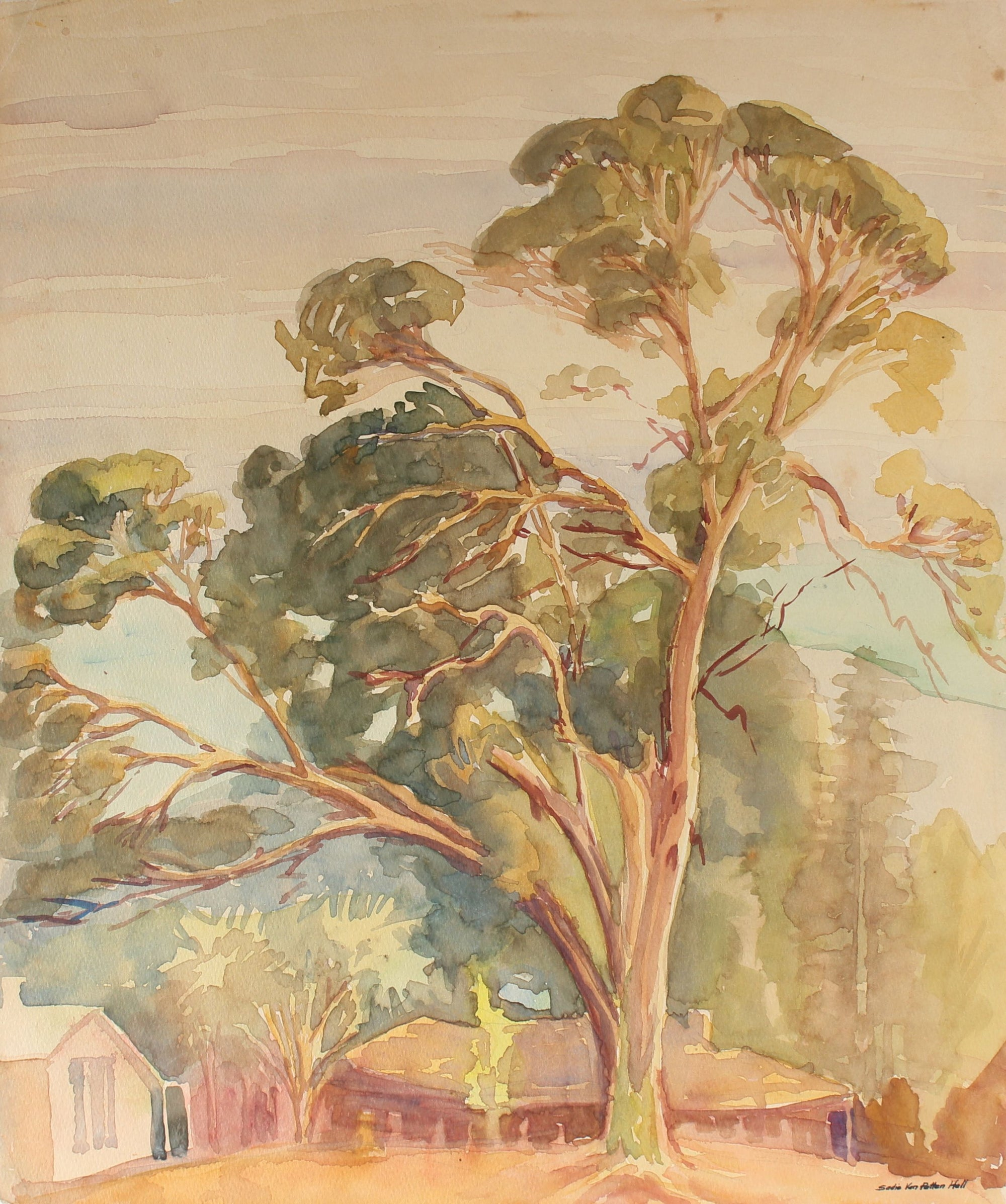 Eucalyptus Watercolor<br>Mid Century California<br><br>#88032