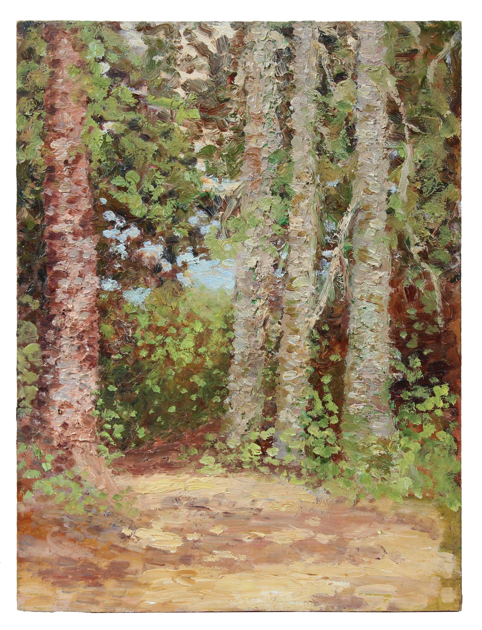 Impressionist Birch Trees in Landscape<br>1900-30s Oil<br><br>#A3520