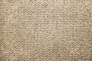 Au Naturel Broadloom Broadloom residential Shop Tapis 131-taupe