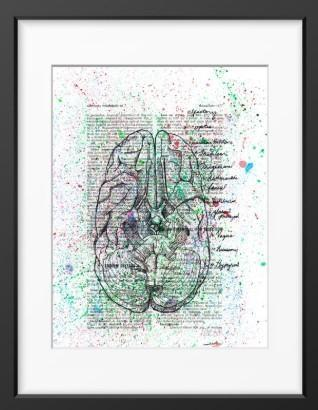 Anatomical Cranial Nerves Splatter - 14x16 / Black Frame / Buy - Limited Edition Print