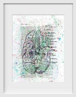 Anatomical Cranial Nerves Splatter - 14x16 / White Frame / Buy - Limited Edition Print
