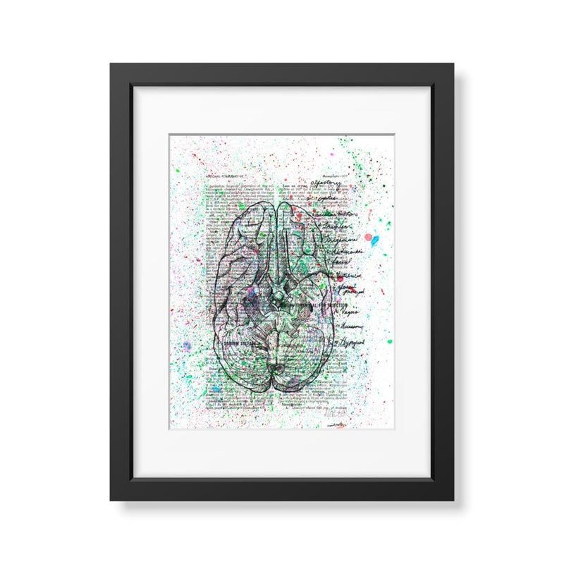 Anatomical Cranial Nerves Splatter - Limited Edition Print