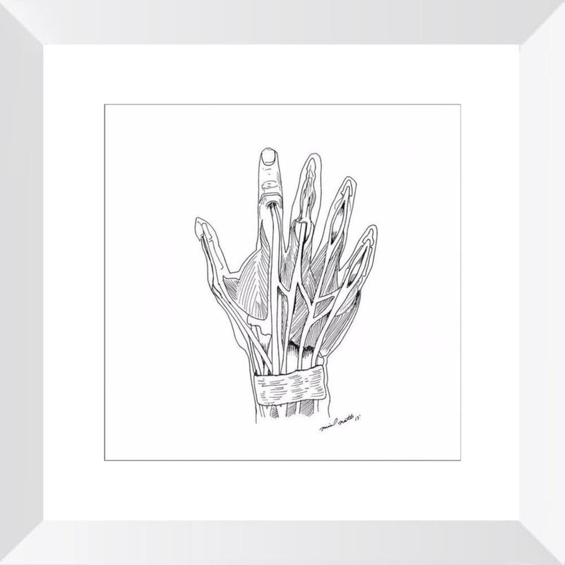 Hand Anatomy - Limited Edition Print