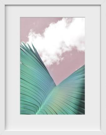 Palm Beach (Palm 1) - 14x16 / White Frame / Buy - Limited Edition Print