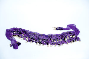 Purple Pallett with gold coins hip scarf